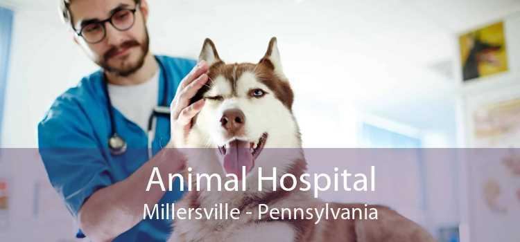 Animal Hospital Millersville - Pennsylvania