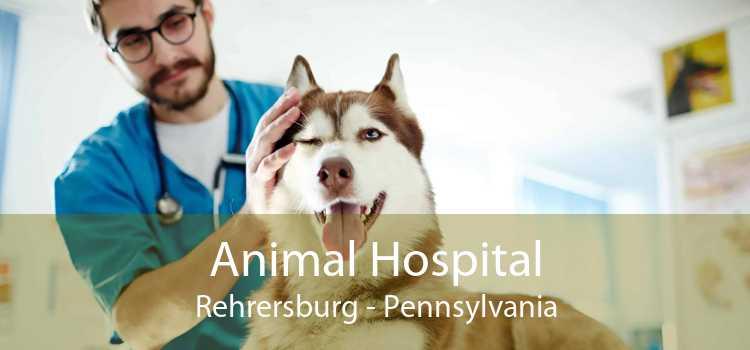 Animal Hospital Rehrersburg - Pennsylvania