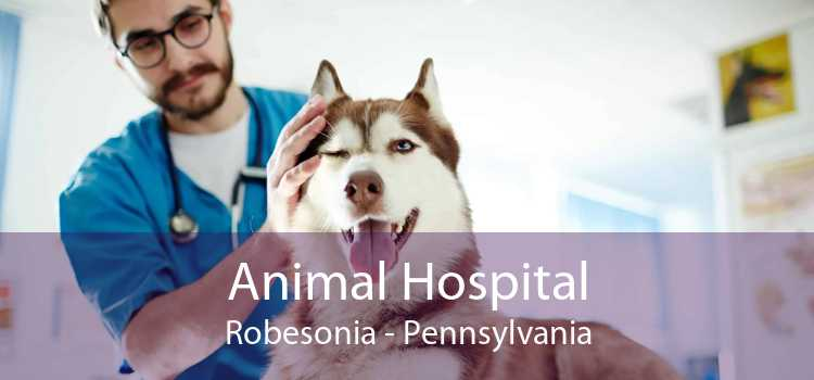 Animal Hospital Robesonia - Pennsylvania