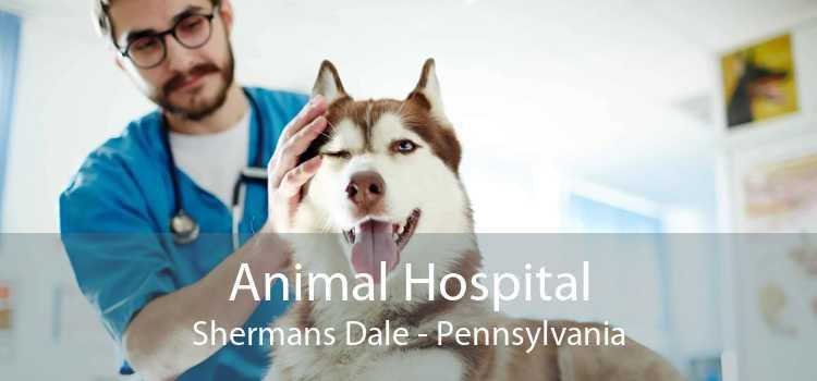 Animal Hospital Shermans Dale - Pennsylvania