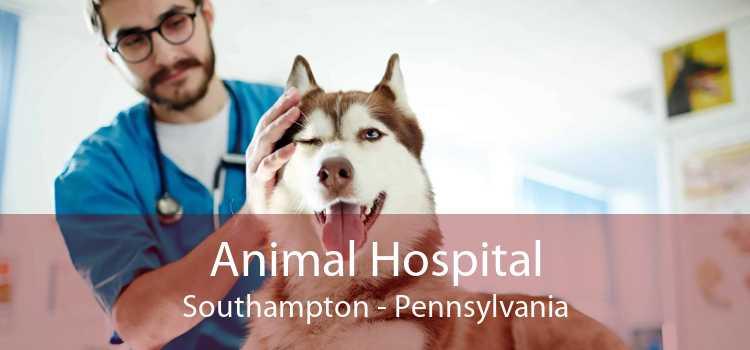 Animal Hospital Southampton - Pennsylvania