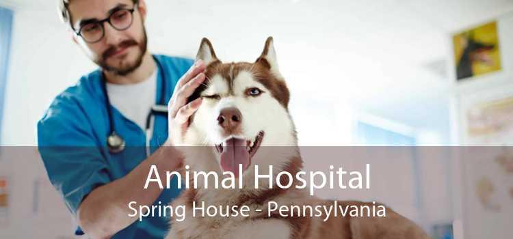 Animal Hospital Spring House - Pennsylvania