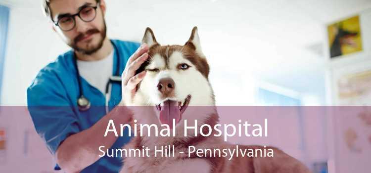 Animal Hospital Summit Hill - Pennsylvania