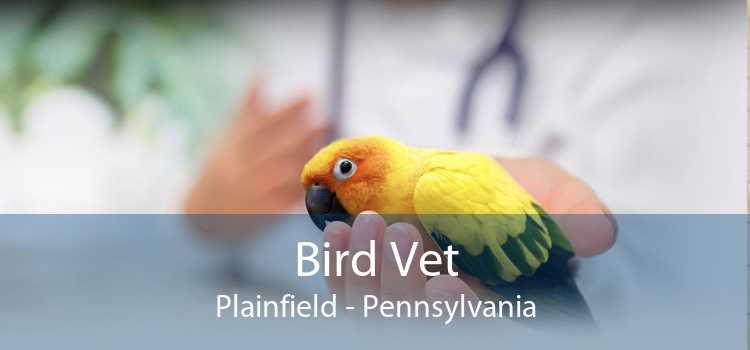Bird Vet Plainfield - Pennsylvania