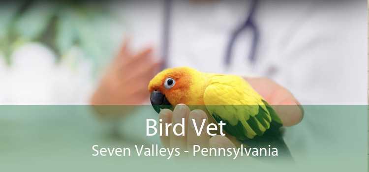 Bird Vet Seven Valleys - Pennsylvania