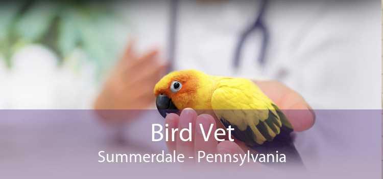 Bird Vet Summerdale - Pennsylvania