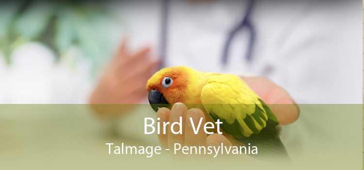 Bird Vet Talmage - Pennsylvania