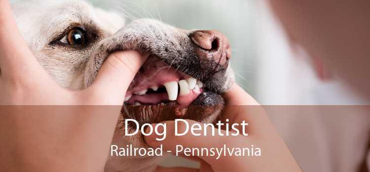 Dog Dentist Railroad - Pennsylvania