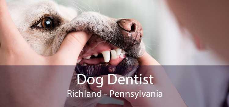 Dog Dentist Richland - Pennsylvania