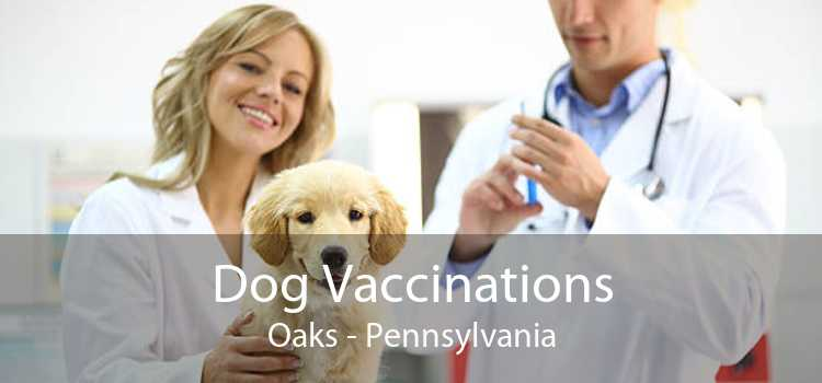 Dog Vaccinations Oaks - Pennsylvania