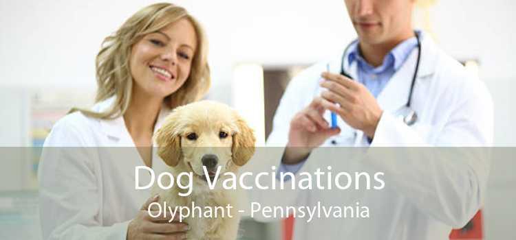 Dog Vaccinations Olyphant - Pennsylvania
