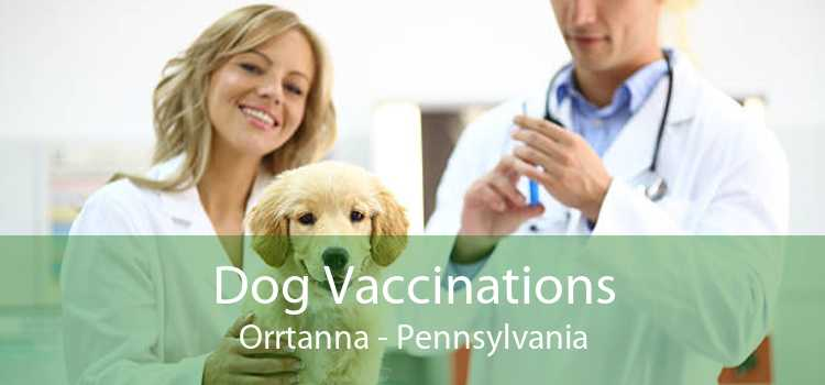 Dog Vaccinations Orrtanna - Pennsylvania