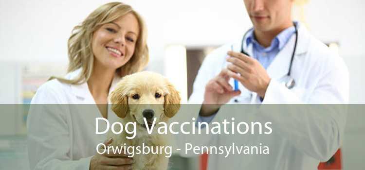 Dog Vaccinations Orwigsburg - Pennsylvania