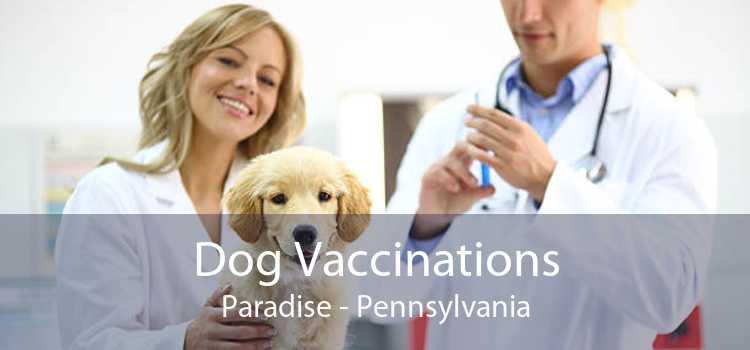 Dog Vaccinations Paradise - Pennsylvania