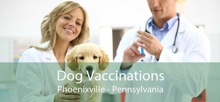 Dog Vaccinations Phoenixville - Pennsylvania