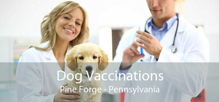 Dog Vaccinations Pine Forge - Pennsylvania