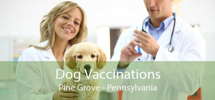 Dog Vaccinations Pine Grove - Pennsylvania