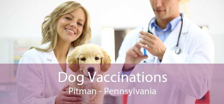 Dog Vaccinations Pitman - Pennsylvania