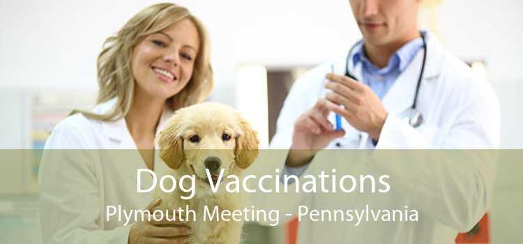 Dog Vaccinations Plymouth Meeting - Pennsylvania