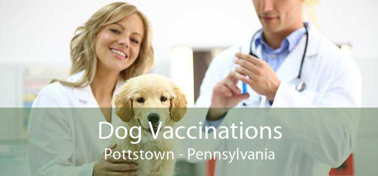 Dog Vaccinations Pottstown - Pennsylvania