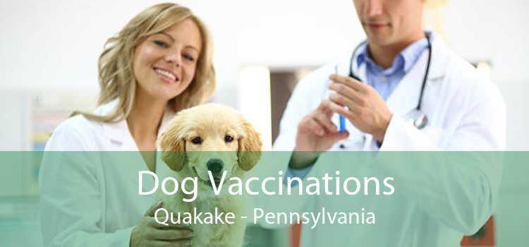 Dog Vaccinations Quakake - Pennsylvania
