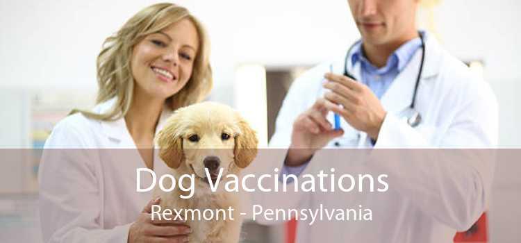 Dog Vaccinations Rexmont - Pennsylvania