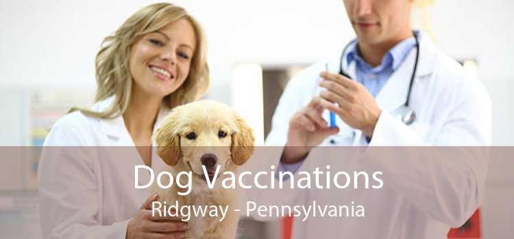 Dog Vaccinations Ridgway - Pennsylvania
