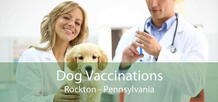 Dog Vaccinations Rockton - Pennsylvania