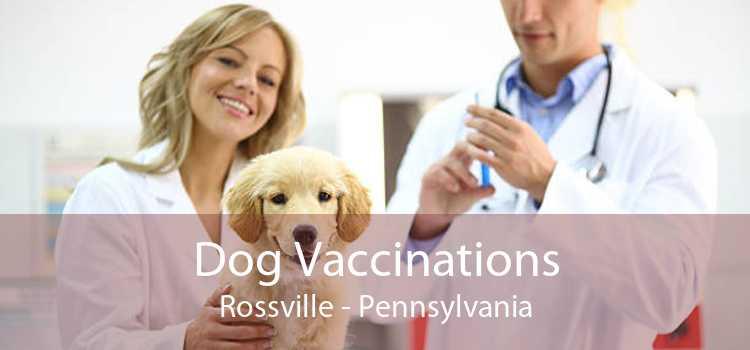 Dog Vaccinations Rossville - Pennsylvania