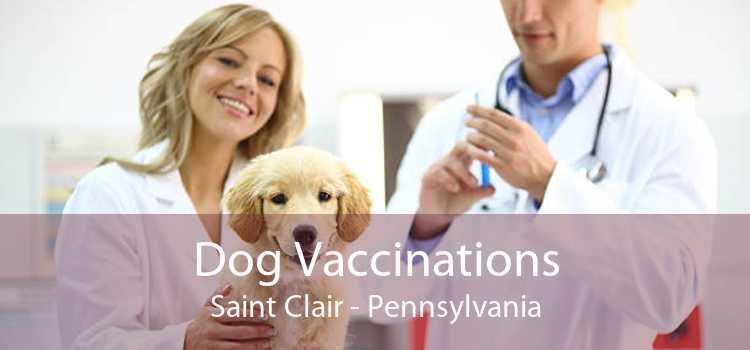 Dog Vaccinations Saint Clair - Pennsylvania