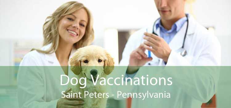 Dog Vaccinations Saint Peters - Pennsylvania
