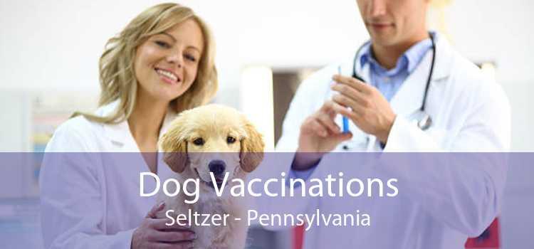 Dog Vaccinations Seltzer - Pennsylvania