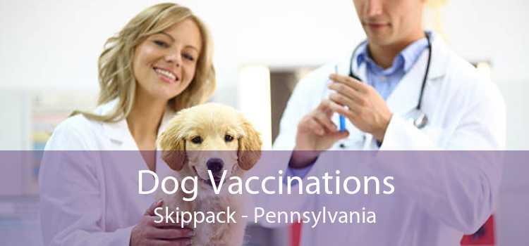 Dog Vaccinations Skippack - Pennsylvania