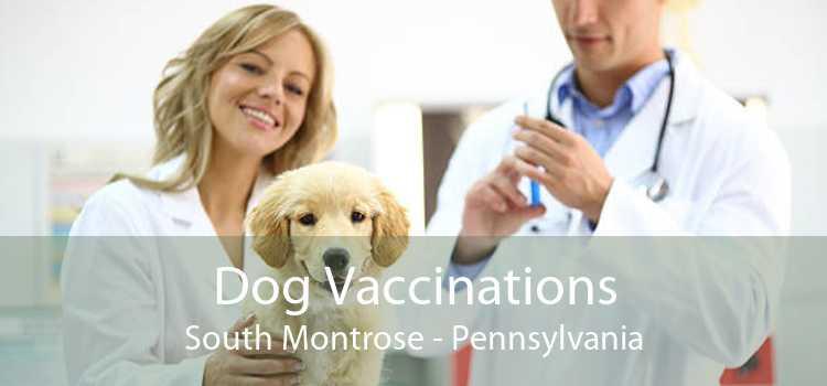 Dog Vaccinations South Montrose - Pennsylvania