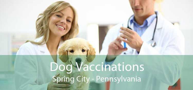 Dog Vaccinations Spring City - Pennsylvania