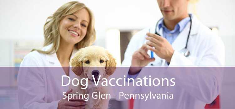 Dog Vaccinations Spring Glen - Pennsylvania