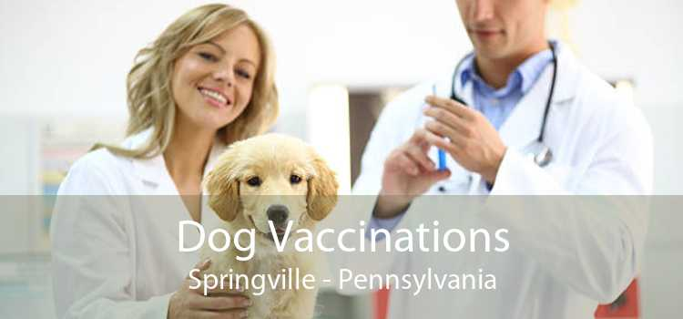 Dog Vaccinations Springville - Pennsylvania