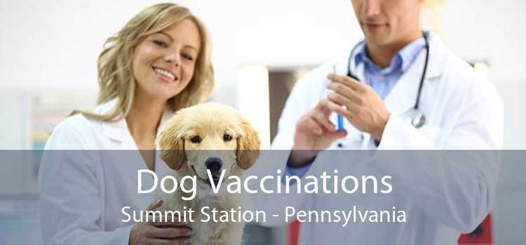 Dog Vaccinations Summit Station - Pennsylvania