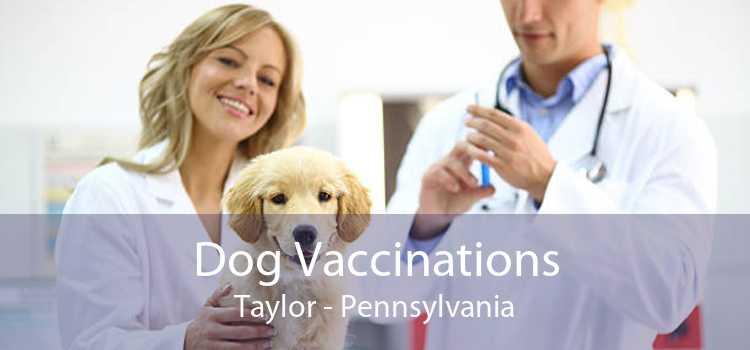 Dog Vaccinations Taylor - Pennsylvania