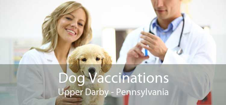 Dog Vaccinations Upper Darby - Pennsylvania