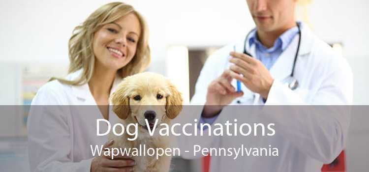 Dog Vaccinations Wapwallopen - Pennsylvania