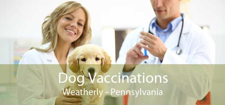Dog Vaccinations Weatherly - Pennsylvania