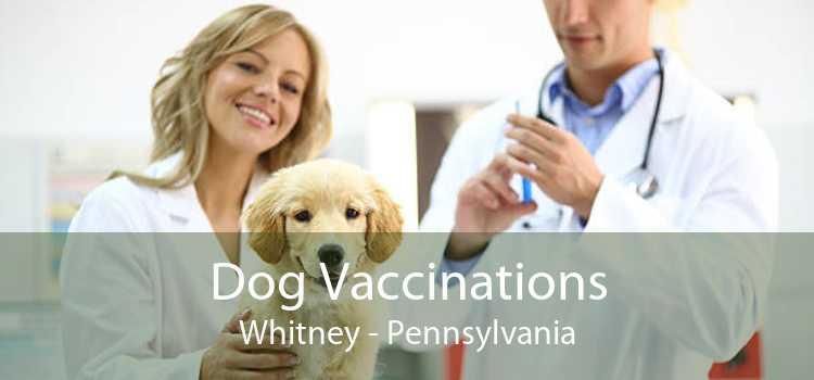Dog Vaccinations Whitney - Pennsylvania