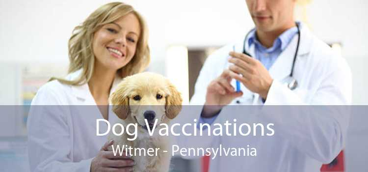 Dog Vaccinations Witmer - Pennsylvania