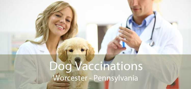 Dog Vaccinations Worcester - Pennsylvania