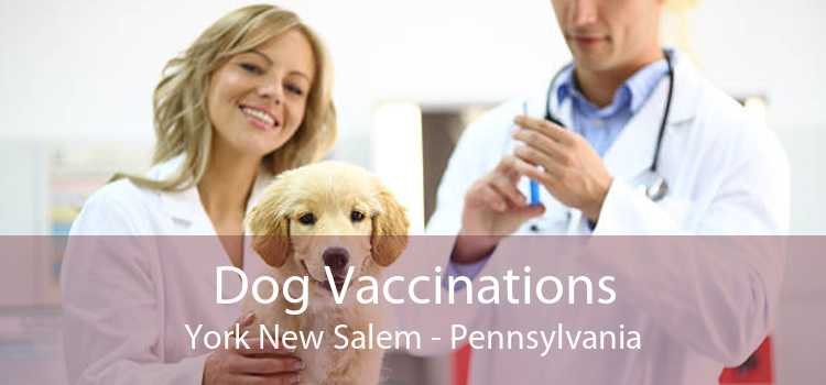 Dog Vaccinations York New Salem - Pennsylvania