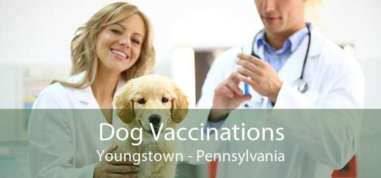 Dog Vaccinations Youngstown - Pennsylvania