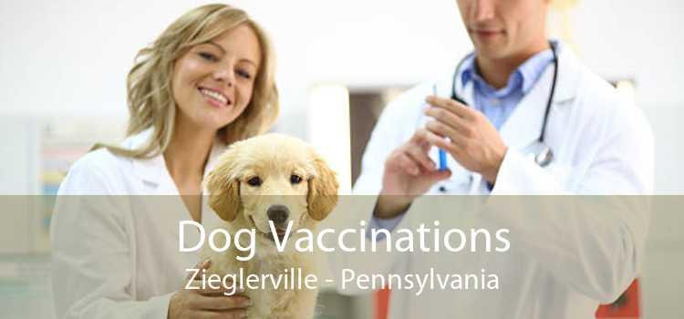 Dog Vaccinations Zieglerville - Pennsylvania