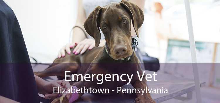 Emergency Vet Elizabethtown - Pennsylvania
