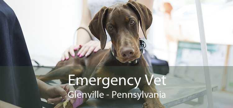 Emergency Vet Glenville - Pennsylvania